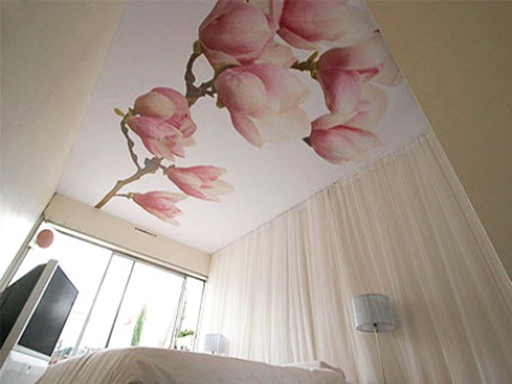 Расписные потолки фото