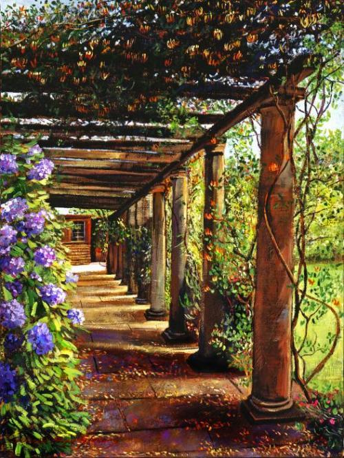 Перголы садовые фото