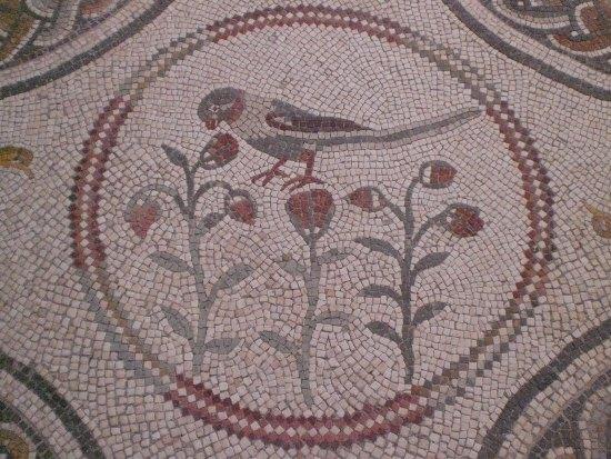 Мозаично бетонные полы