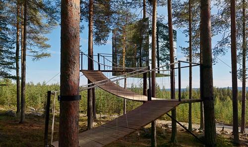 TreeHotel отель на деревьях