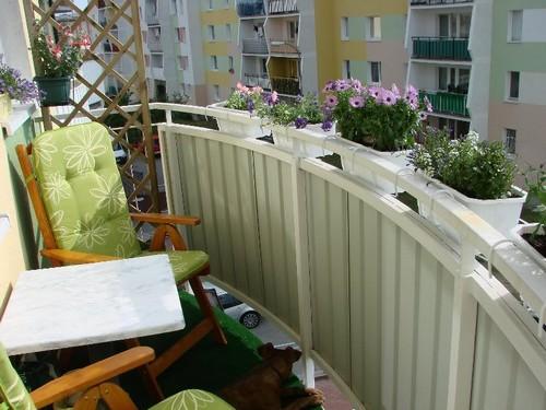 Какие цветы выращивать на маленьком балконе