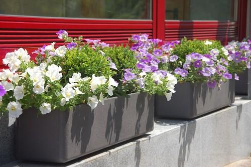 Уличные контейнеры для цветов