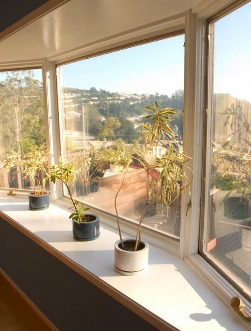 Окно с эркером - цветы на подоконнике