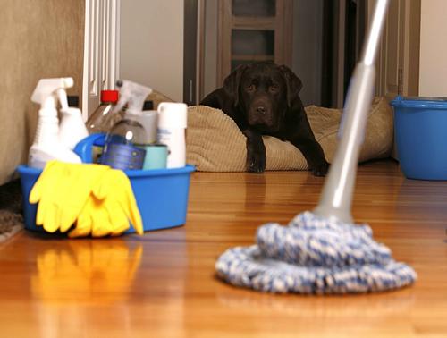 Генеральная уборка после переезда в новую квартиру