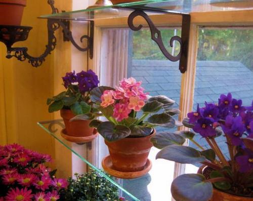 Стеклянные полки для цветов на подоконник