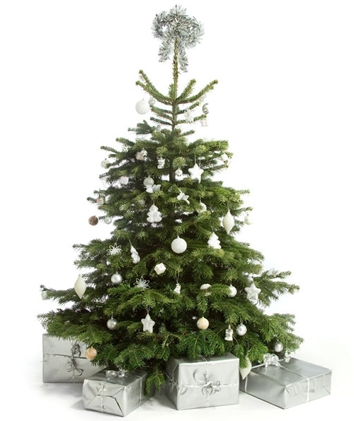 Одноцветное украшение новогодней елки 2013