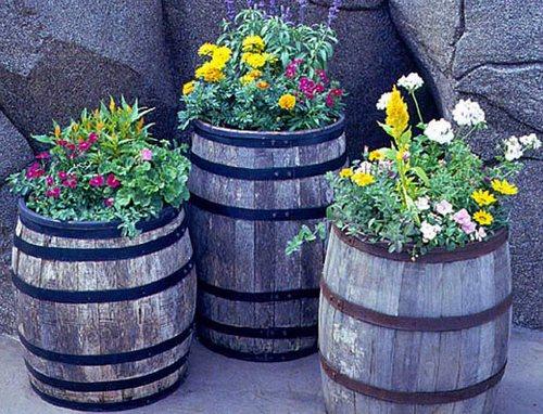 Цветы в садовых бочках