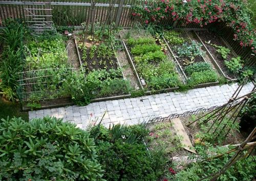 Как сделать декоративный огород фото