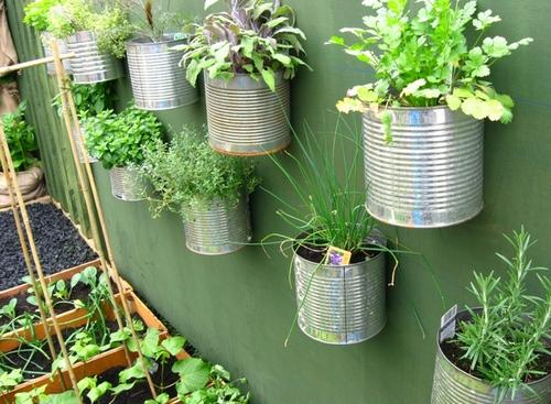 Декоративный вертикальный огород