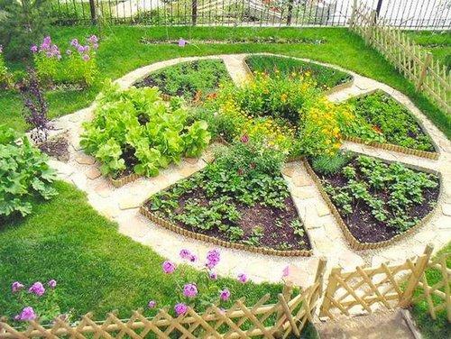 Схема декоративного огорода фото