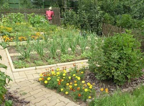 Украсить огород своими руками с фото