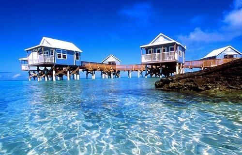 Бермуды жизнь на воде
