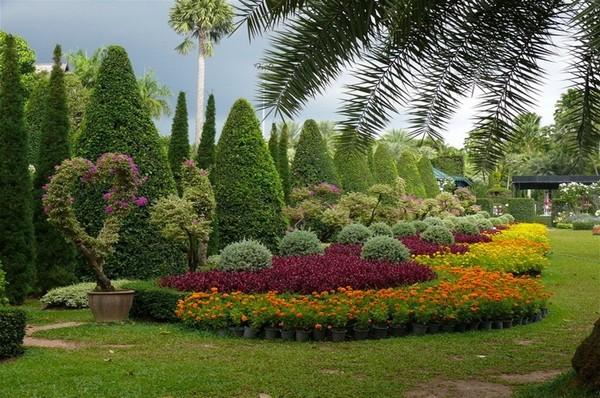 Растения для ландшафта