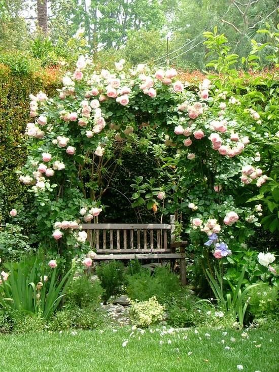 Арка для розы плетистой