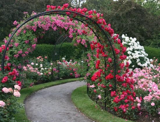 Красивые арки для сада из цветов