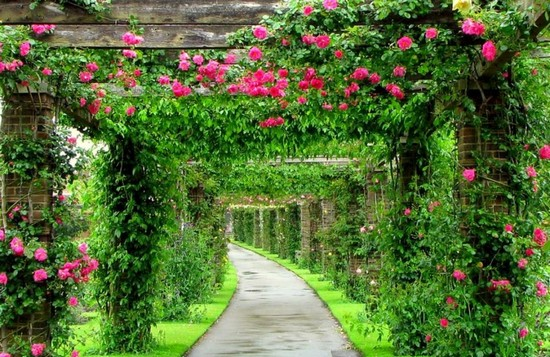 арки деревянные для сада
