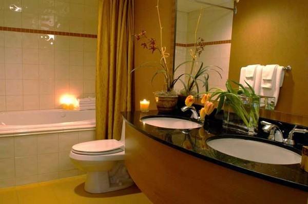 Разделение унитаза и ванны шторкой
