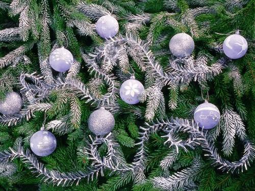 Как украсить новогоднюю елку 2015 фото