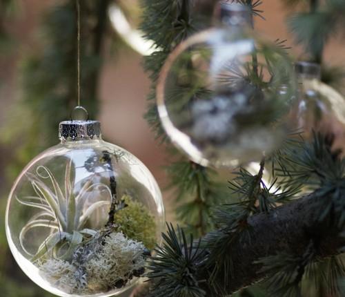 Прозрачные елочные шары фото