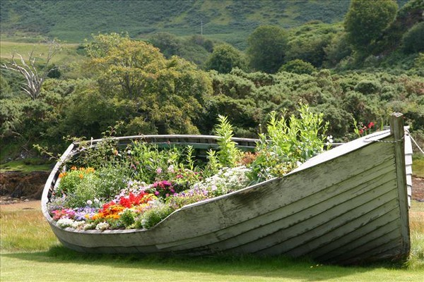 лодка клумба фото