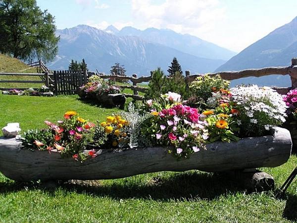 Красивая клумба непрерывного цветения в бревне