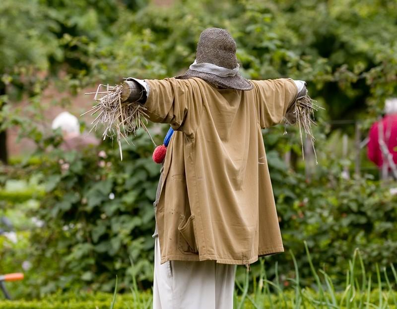Огородное чучело своими руками – как сделать пугало для сада и дачи