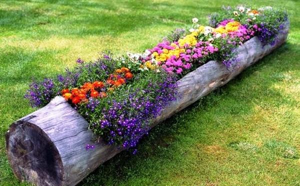 Цветочная клумба в длинном бревне фото