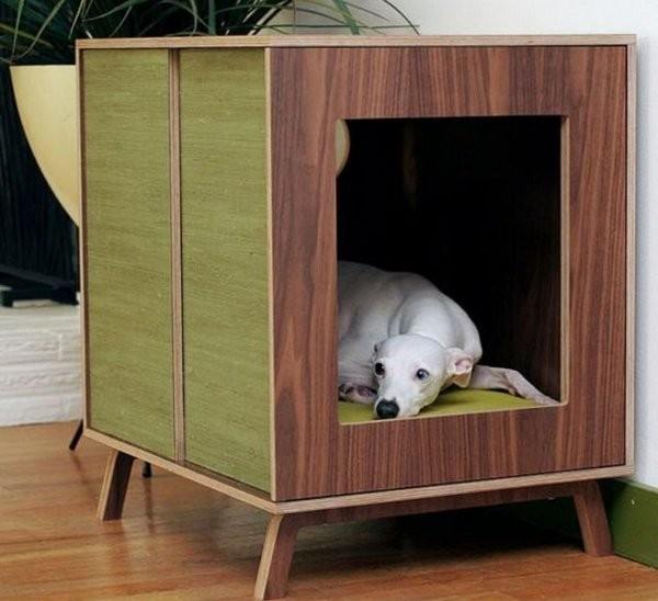 Собачья будка для дома или квартиры