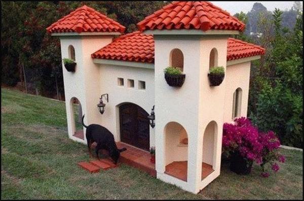 красивые будки для собак фото
