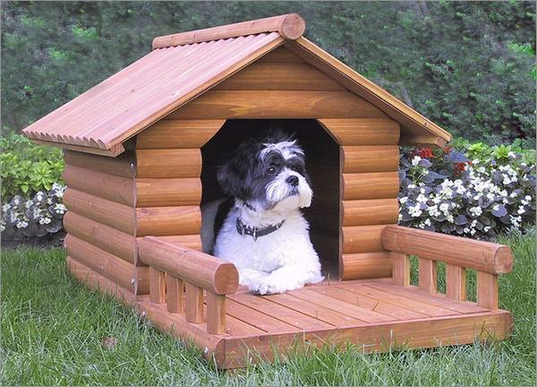 Деревянная собачья будка своими руками фото