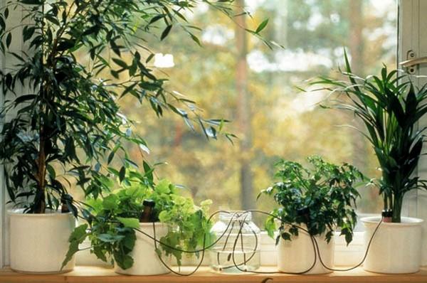 Система полива комнатных растений на время отпуска