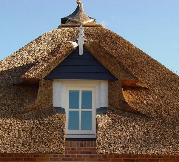 крыша из камыша фото