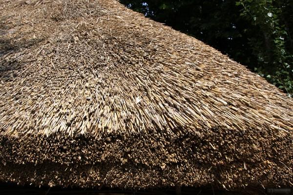 камышовые крыши фото