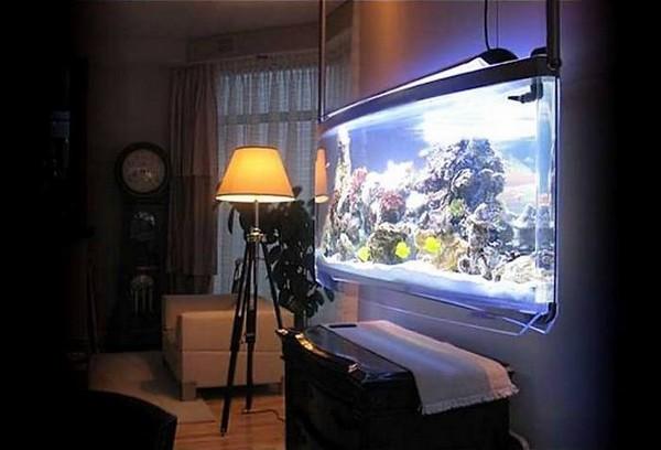 Подвесной аквариум на стену
