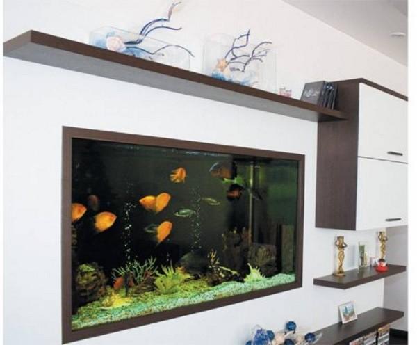 Настенный аквариум фото
