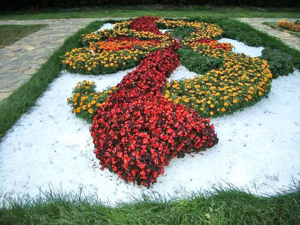 Необычные формы цветников и клумб фото