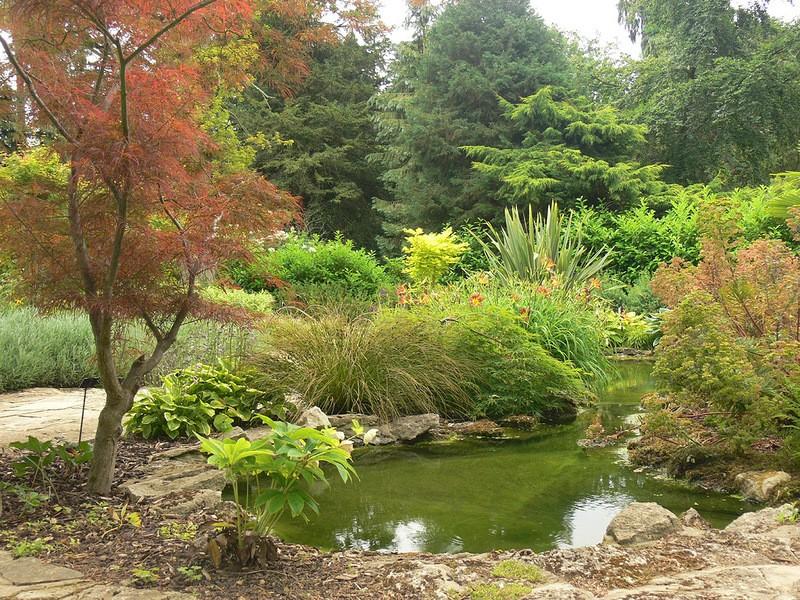 Сад в пейзажном стиле фото