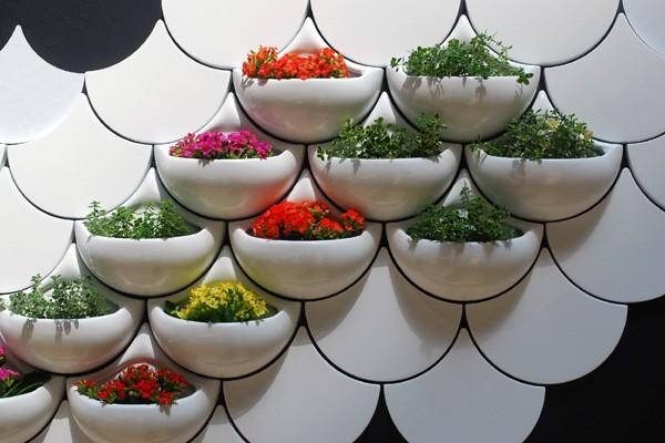 комнатные цветы в интерьере фото: