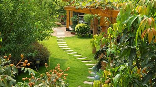 Садовые дорожки из кирпича