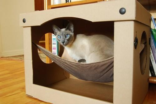 Самодельный домик для кошки с гамаком