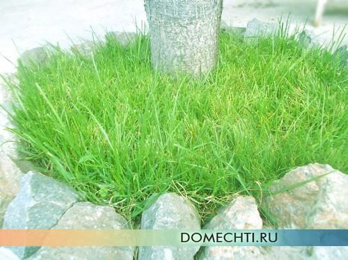 Стрижка газона маленького размера