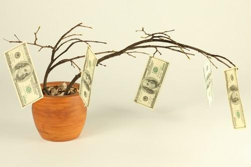 Денежное дерево для привлечения денег в дом