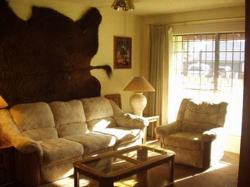 Шкура медведя в интерьере