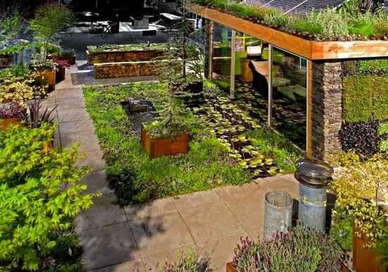 Зеленые насаждения и облагораживание крыши