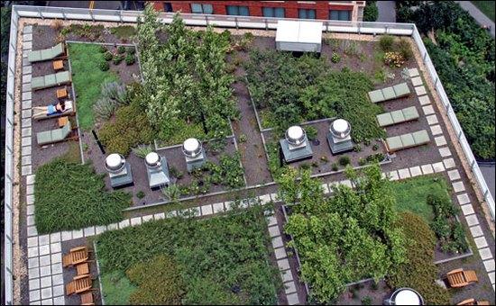Планирование озеленения крыши