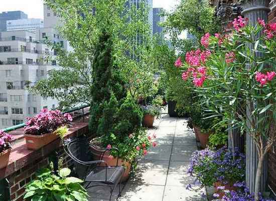 Красивое озеленение крыш домов