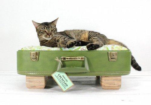 Кровать-чемодан для кошки фото