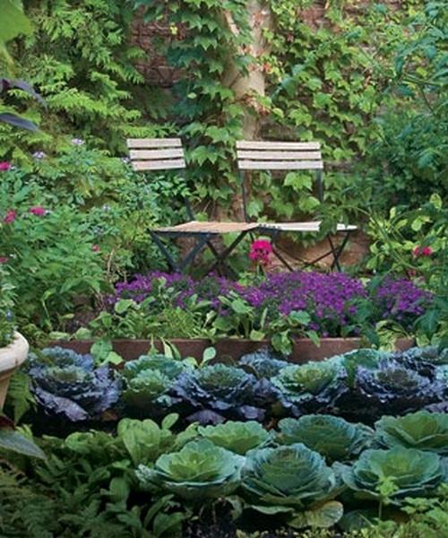 как украсить огород цветами