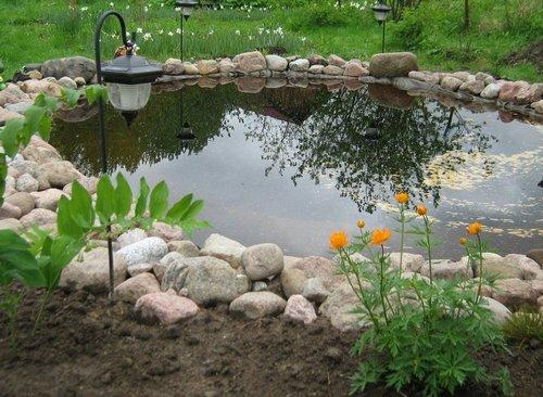 Красивый водоем на дачном участке