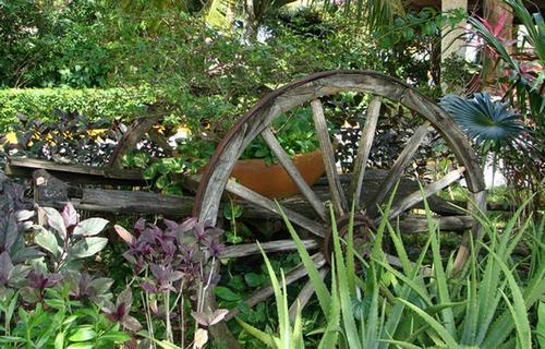 Старая телега в саду фото